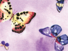 Colouring Paper - Purple Butterfly